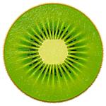 Kiwi 3.0